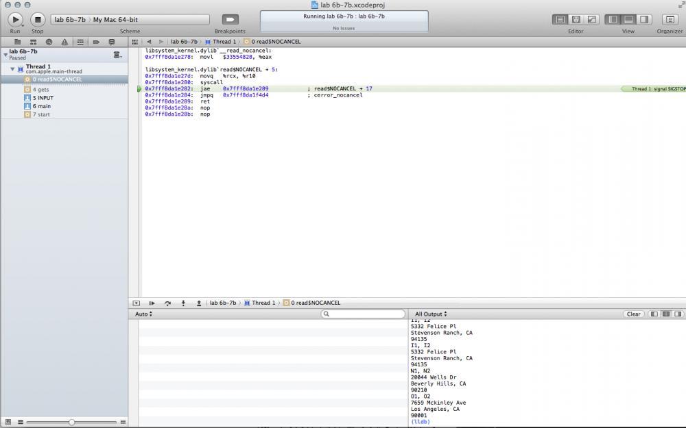 Array of pointers to a struct-xcode-jpg