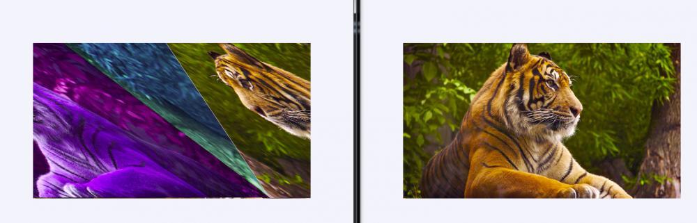 24 bit bmp mirror image in c-untitled-jpg