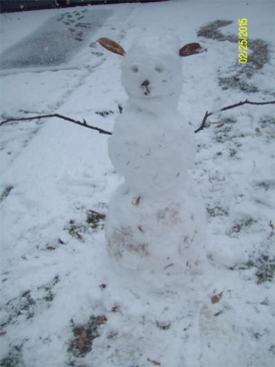 Your hobbies outside of computers-snowman1-jpg