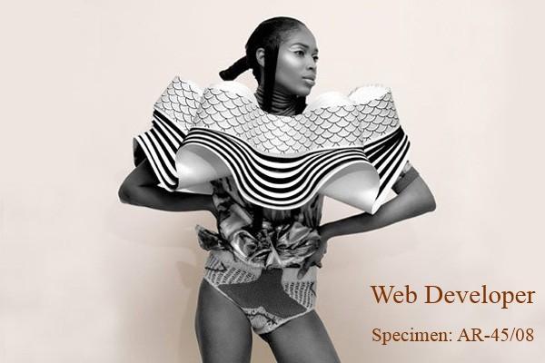 Why I hate web developers...-wd-jpg