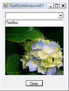 PrintWindow in .Net-applications in non-active desktop-useprintwindow-win7-jpg